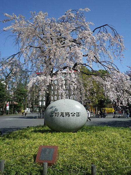 450px-UenoOnshiKoen20120407