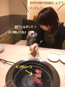 お肉の焼き加減