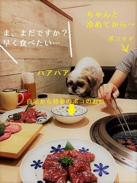 焼き肉ポコ1
