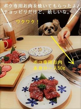 焼き肉ポコ3
