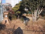 みどりの公園_2
