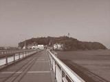 0610緑の江ノ島.jpg