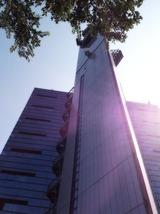 2012-09-13 14:25:18 写真1