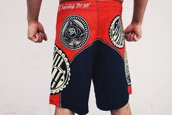 Alpha Shorts 2