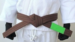 BOREALIS Brown belt 1