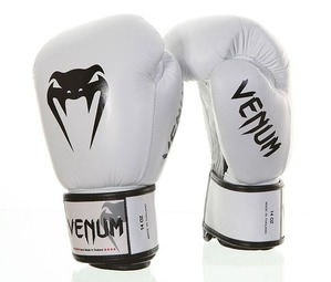 BoxingGloves-Power Ice 1