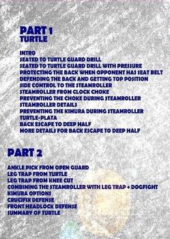 DVDwrap_telles_turtle_2