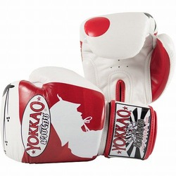 Ronin Boxing Gloves1