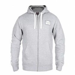 Core Hoodie grey 3