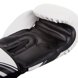 Nitro Boxing Gloves white 3