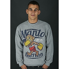 sweatshirt WARRIORS Gray1