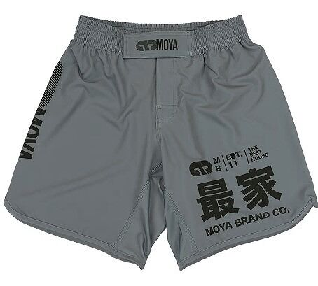 ARTIKA TRAINING SHORT1