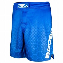 Legacy III Shorts blue white 1