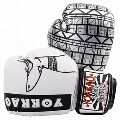 Anubis Muay Thai Boxing Gloves 1