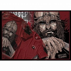 viking_3_tshirts_3