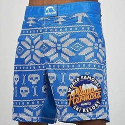 fight shorts HERMOSA blue1