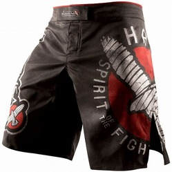 Spirit of the Fighter Shorts 1a