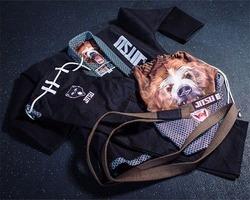 Jitsu_Bear2