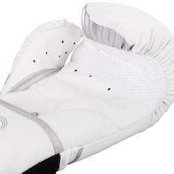 Challenger 20 Boxing Gloves whitesilver 4