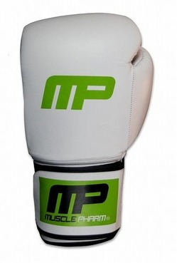 Boxing Glove Wt1