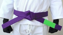 BOREALIS Purple belt 1