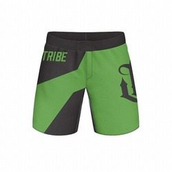 Focus Grappling Shorts blackgreen 1
