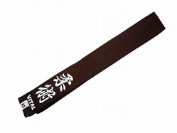 vital_Embroiderybelt_brown1
