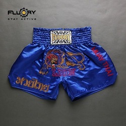 muay thai lion 6