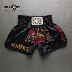 muay thai lion 4