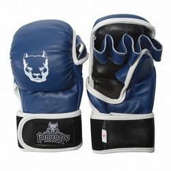 Blue Line Hybrid Training Gloves 1