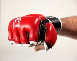 Red Line Full Protect MMA Gloves 2