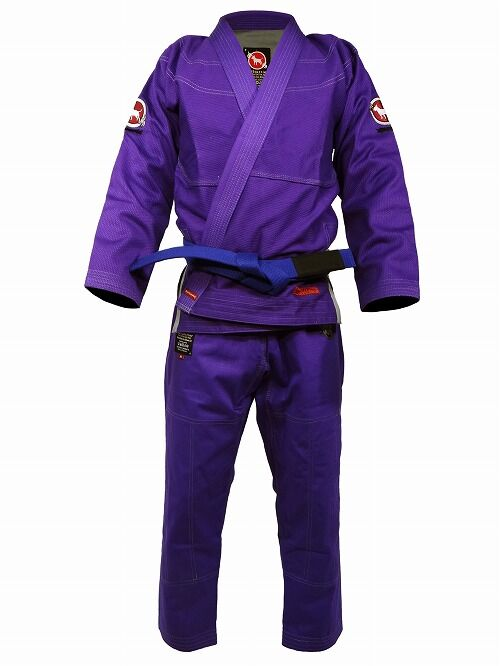 basicgi_purple_1