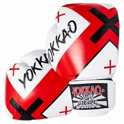 X-White Muay Thai Boxing Gloves 1