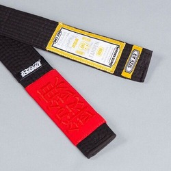 tanren v4 BJJ Belt black 2