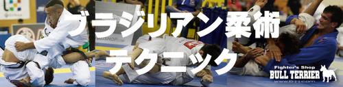 ブラジリアン柔術テクニック