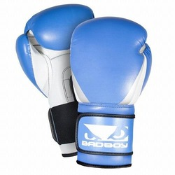 Training Series 20 Boxing Gloves bluewhiteblack1