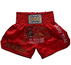 muay thai lion 7