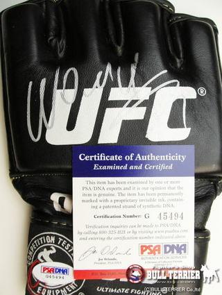 UFCグローブヴァンダレイシウバサイン入り