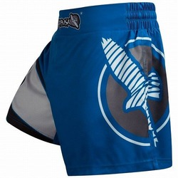 Kickboxing Shorts blue gray 1