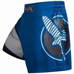 Kickboxing Shorts blue gray 1