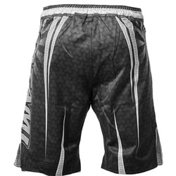 Matrix Fight Shorts 2