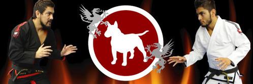bullterrierfire