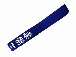 vital_Embroiderybelt_blue1