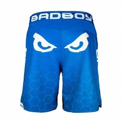 Legacy III Shorts blue white 3