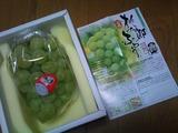 桃太郎葡萄−2