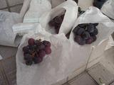 萎んだ葡萄