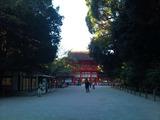 糺の森から下鴨神社