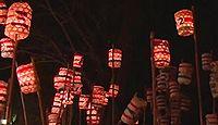野木神社 - 田村麻呂手植えの樹齢1200年のイチョウ、12月に提灯もみ祭り、フクロウ繁殖