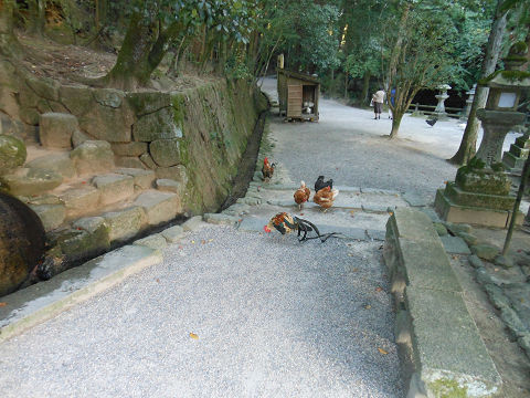 石上神宮を去る - 鶏、牛の像、ワカタ、そして柿本人麻呂 まだまだ話題豊富な古社【古事記紀行2014】のキャプチャー