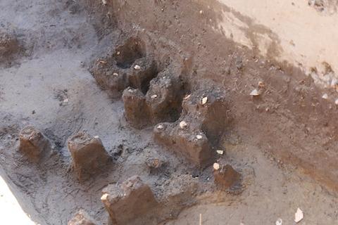 牡丹山諏訪神社内の5世紀円墳から須恵器の破片、大和政権と繋がる有力者 - 新潟のキャプチャー